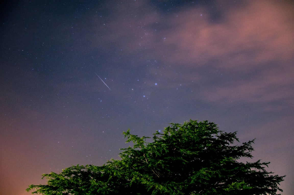Coogee Stars